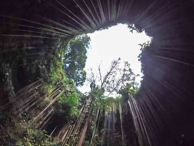 Cenote Ik Kil - Roadtrip 10 jours au Mexique - Blog Voyage Ma Folie Vagabonde